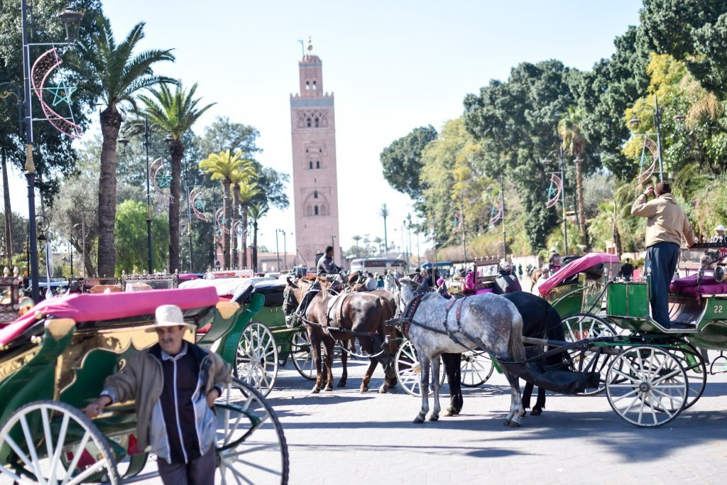 horse drawn carriage in Marrakesh