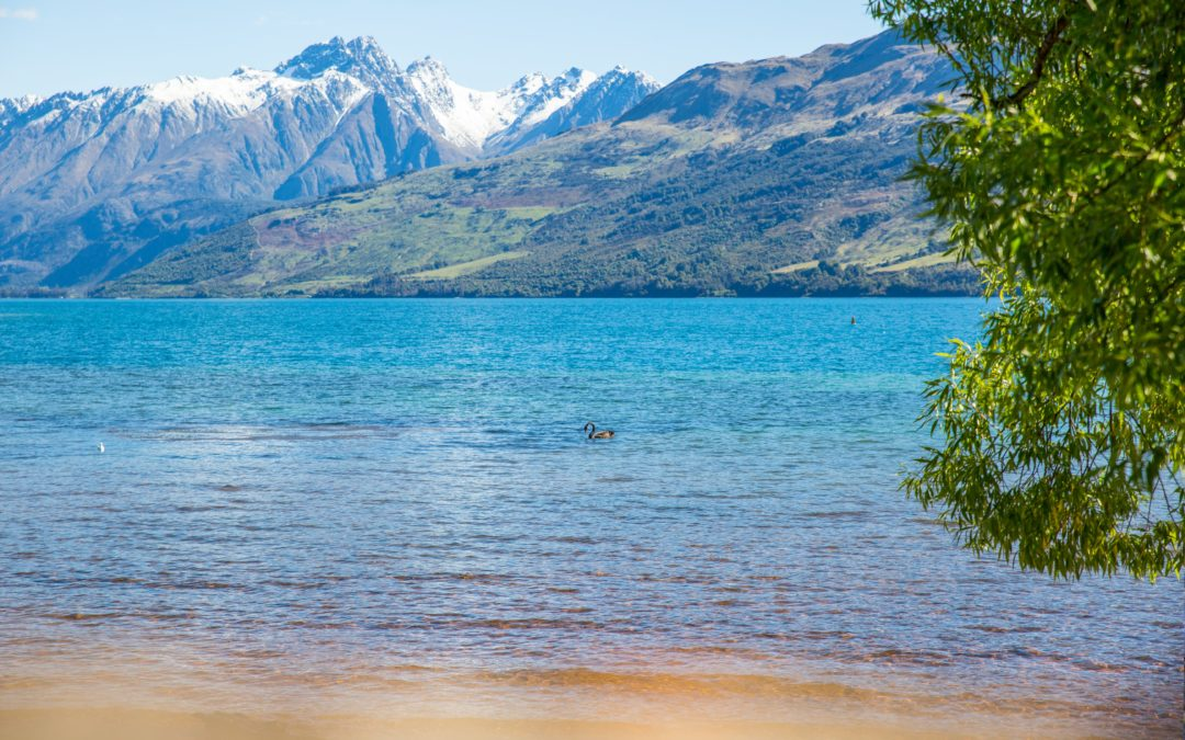 The Top of the South Island New Zealand