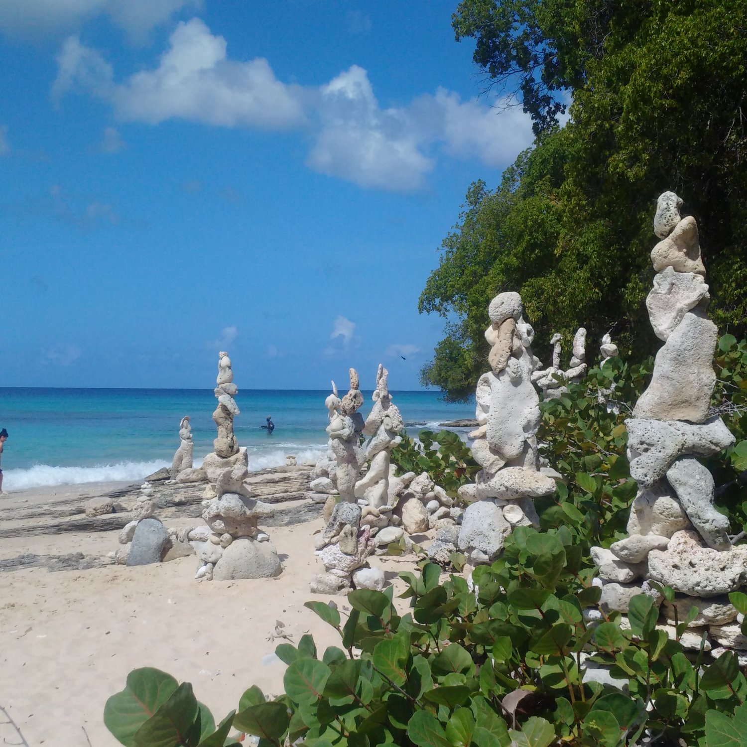 Barbados rocks beach