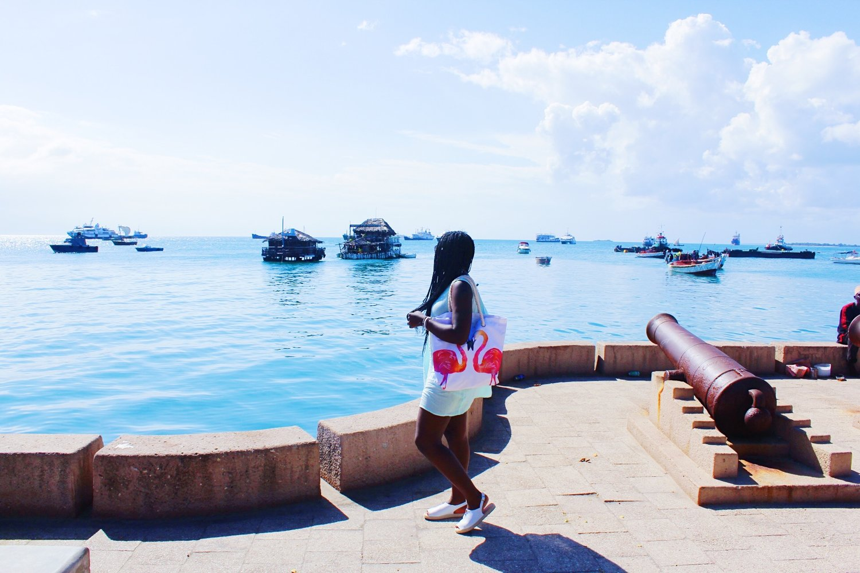 Zanzibar port view