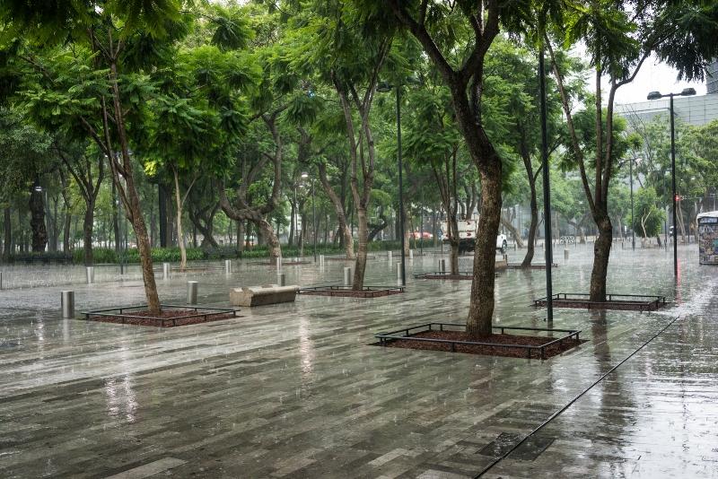 Mexico City rain